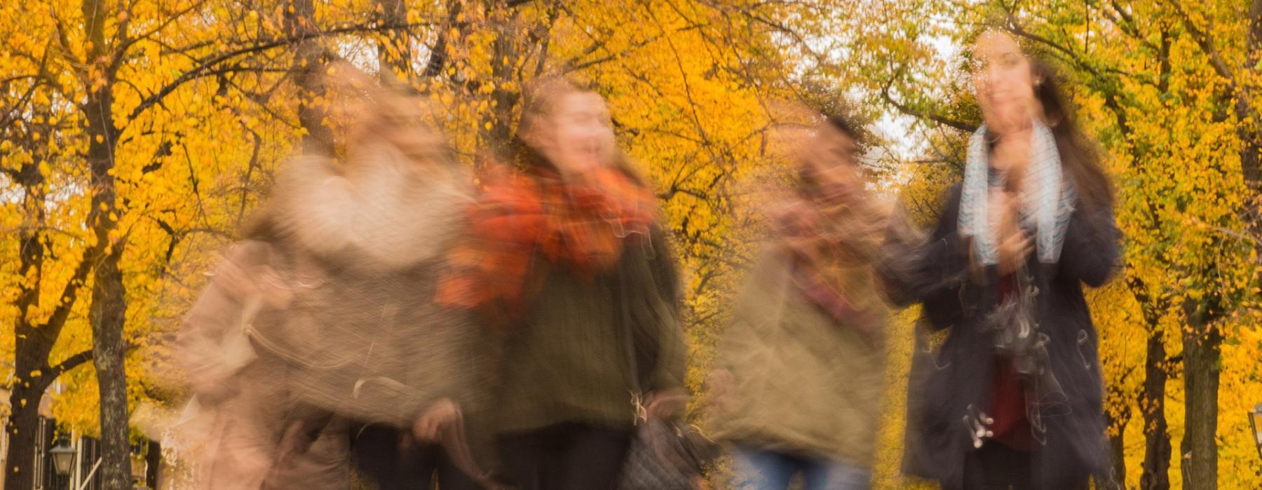 Ragazze camminano in un parco in autunno