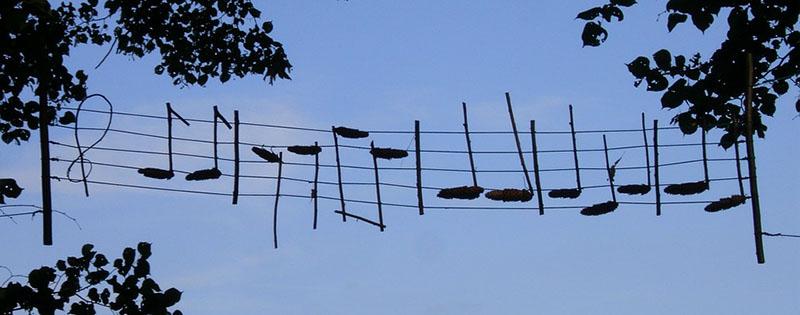 Decorazioni a forma di note musicali appese tra gli alberi
