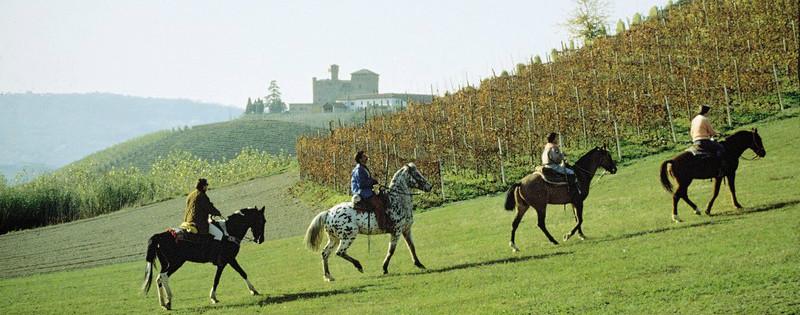 Passeggiata a cavallo nelle Langhe